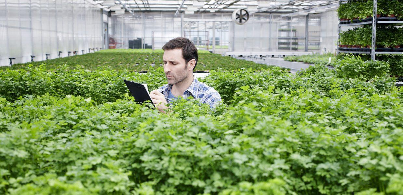 Servizi LCA per migliorare la prestazione ambientale dei prodotti.