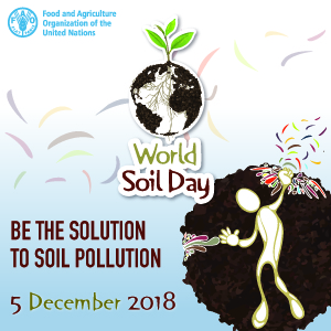 La Giornata Mondiale del Suolo richiama l'attenzione sull'importanza del suolo sano e sulla gestione sostenibile delle risorse del suolo.